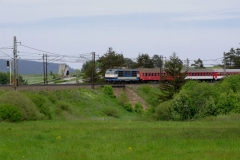 DSCF9398.JPG