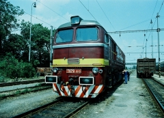 T 679.1013.JPG
