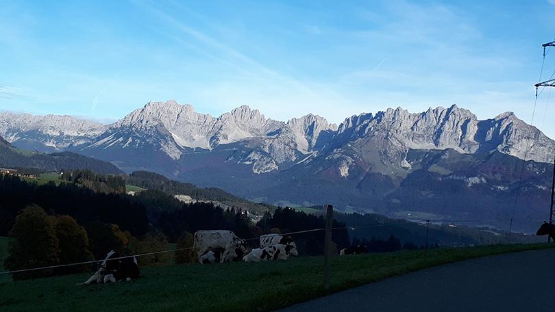 Horský masív Wilder Kaiser s vysokohorskými pasienkami