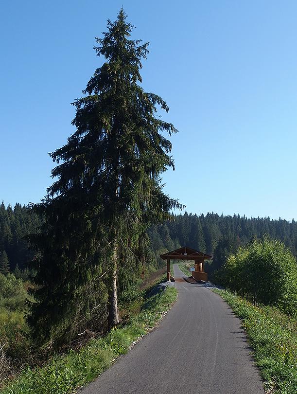 ?po prekonaní rozvodia Oravice a Jelešne trasa mierne klesá k bývalému hraničnému mostu ponad Jelešňu