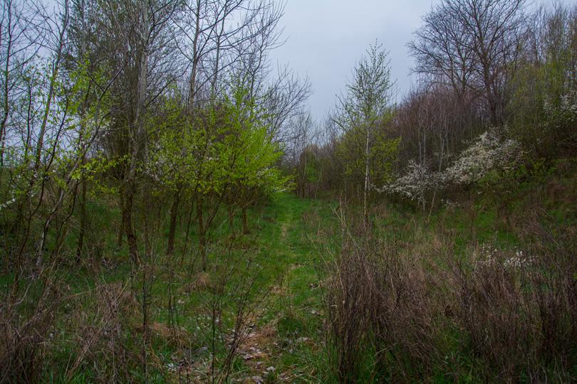 Teleso spojky Slavošovce – Lubeník v tesnej blízkosti Koprášskeho viaduktu.