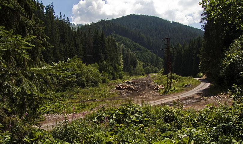 Nákladisko pod horárňou sa používa dodnes s malým rozdielom: dnes sa drevo vozí na autách. Čo pred tým odviezol jeden vagónik, dnes odvezie jedno auto.