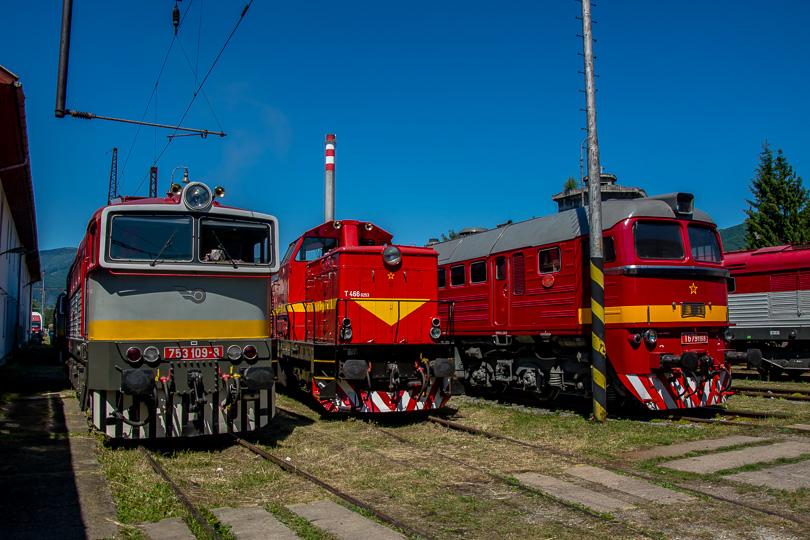 Vystavené rušne zľava 753 109 a Pilštik T466.0253 zo Zvolena, vedľa Sergej T679.1168.