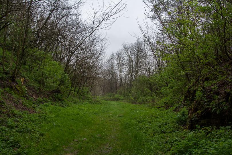 Teleso trate Lubeník – Slavošovce, pohľad od slavošovského portálu. Keby všetko dopadlo podľa pôvodných plánov, tadiaľto by viedla trať.