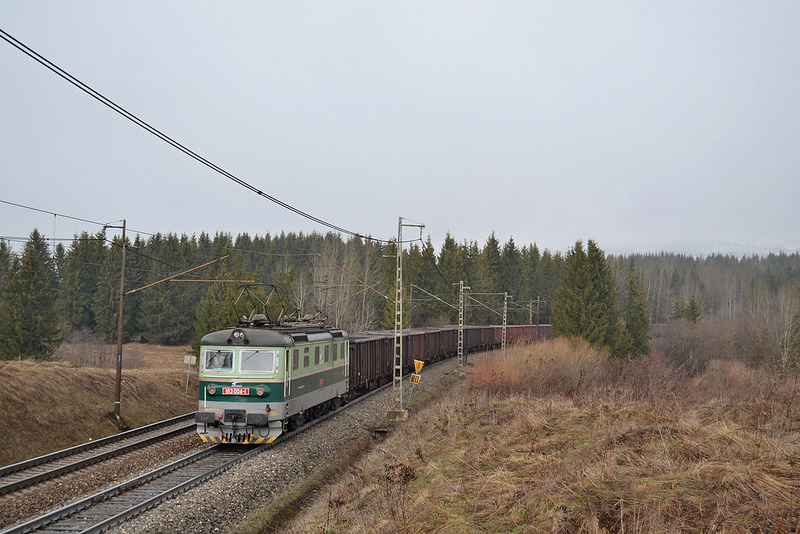 Nákladný vlak v čele s dvojičkou a vzadu s rakaňou 183 004.(Foto:PeterB)