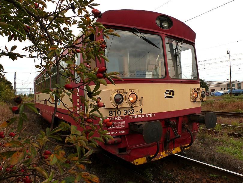 """motorák 810.362, ako """"šípková Ruženka"""""""
