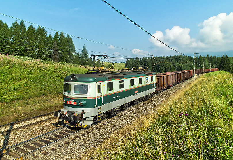 Pri čakaní na ICčko prebehol po pri nás nákladný vlak v čele s dvojičkou a na konci s postrkom rakane 183 001. (Foto:DjMiscin)