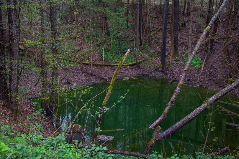 Kto by nevedel, o čo sa jedná a zbadal by túto fotku, myslel by si, že ide o obyčajné jazierko. Ide však o tisovecký portál tunela pod Dielikom. Keďže tunel nie je odvodnený, tento portál je zatopený.