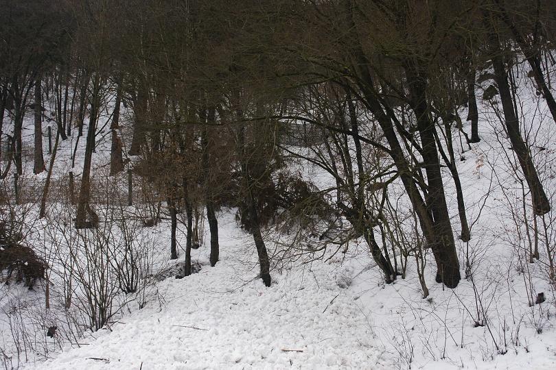 zábrany plné snehu