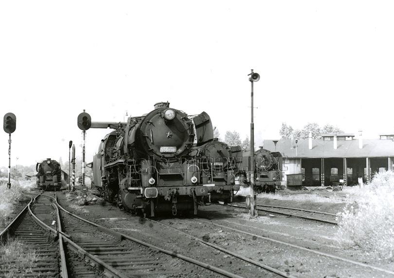 Ještě v roce 1980 bylo možno ve strojové stanici Jaroměř vidět pohromadě několik lokomotiv řady 556.0. Dne 2. 8. 1980 se sešly 556.0350, 0341, 0453 a 042.