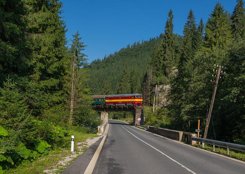 Cecka prechádza cez most medzi DĽJ a Vernárom /foto Duko/