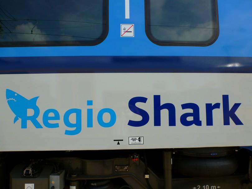 firemný nápis RegioShark